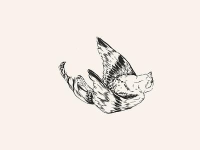 Sparrow chinese traditionalchinesemedicine tcm animals illustrated pentel brush pentel indian ink brush pen ink pen inktober2018 inktober design endangeredspecies drawing endangered animal illustration