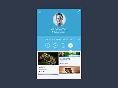 Social Media App. ui ux interface flat blue social media sync interface design