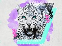 Fierce Leopard