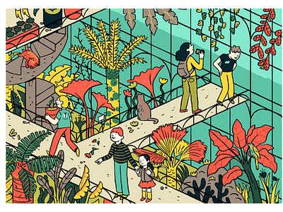 Glass House plant illustration glasshouse plants illustrator illustration graphic editorial art design art