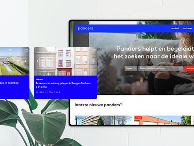 Panders Real Estate Agency 🏡 platform webdesign real estate agency real estate website estate