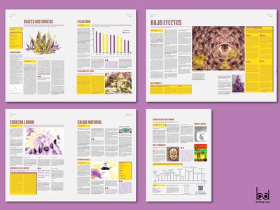 (2/2) Páginas del suplemento / Supplement Pages