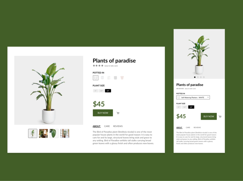 Single Product Shot (daily ui 011) daily ui 012 daily 100 dailyui app design plant ecommerce responsive web design responsive design daily ui