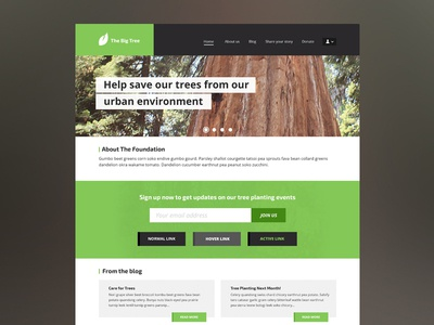 Collective Theme website clean gui flat web design template theme design ux ui minimal simple