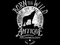 Antique Archaeology Print