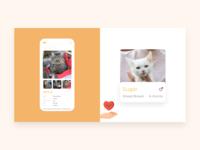 Adaptive Pet Card