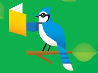 Blue Jay Reading