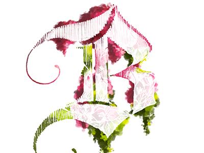 B is for Bouganvillea b lettering dropcap flowers bouganvillea blackletter
