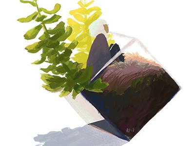 Terrarium 1 hand drawn illustration color study terrarium