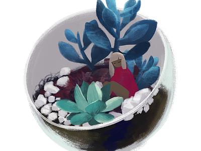 Terrarium 3 illustration succulents terrarium