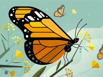 Monarch Butterfly Migration uber design nature monarch butterfly