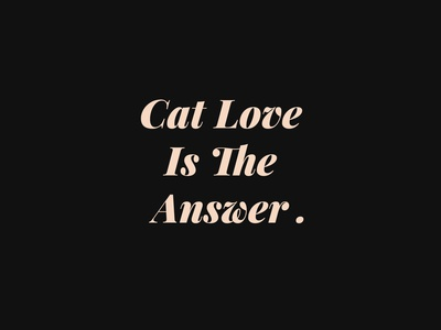 Cat Love Is The Answer Cat T-shirt