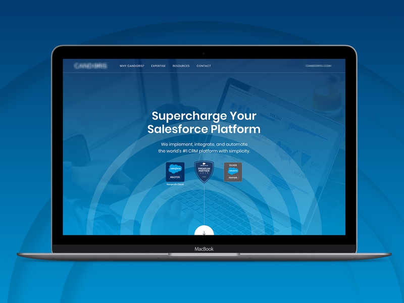 Salesforce Microsite landing page homepage clean salesforce design web design ui website web