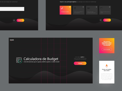 Budget - Applicant Form dribbble app uidesign form design quiz form animation ui website webdesign product design uiux interface