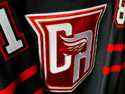 GRAND RAPIDS GRIFFINS - FAN UNIFORM 2018 branding logo ahl red wings detroit hockey griffins grand rapids