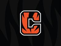 CINCINNATI BENGALS - Logo Concept