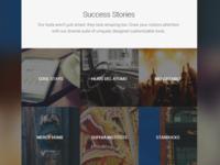 Case Study/Success Stories