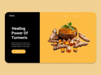 Spices website concept uidesign ui uxdesign  webdesign