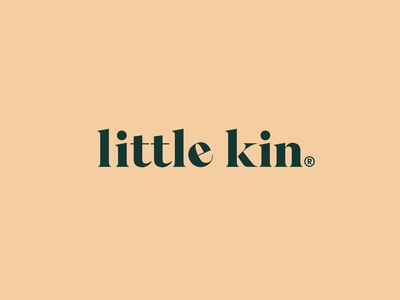 Little Kin photographer mobile web icon typography vector logo branding design