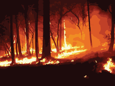 WILDFIRES digital illustration adobe illustrator colours love design vector artwork graphicdesign illustration wildfire california