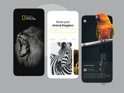 Nat Geo Mobile App Concept informational 2021 inspiration clean onboarding ui nat geo animal wildlife concept onboarding ux mobile app minimal mobile ui app design app daily ui uiux ui design ui