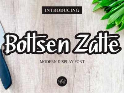 Preview Bottsen Zatte vector font design illustration branding handmade handlettering handletter