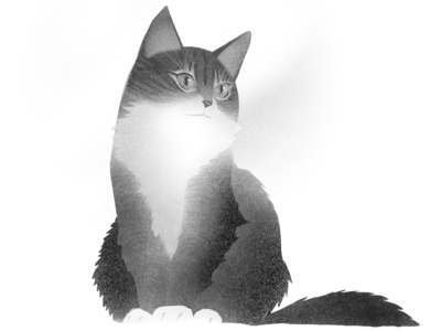 ma cat4