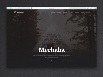 SolvePark bold footer sentinel navigation hero image typography website solvepark
