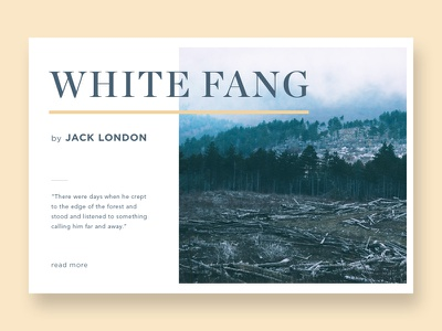 Forest Fog photo pack graphic design typography typo grid layout fog mist forest stock photo pack stock