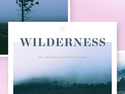 Wilderness photo pack grid layout design graphic vintage hipster trees mountain mist fog stock photo