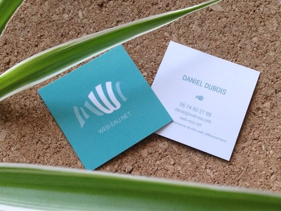 Daniel Dubois WEB-EAU - Business Cards typography branding logo design vector