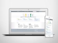 Crown Software, Web Design