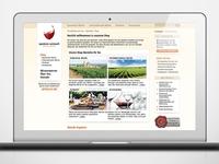 Webdesign for Spaniens Weinwelt