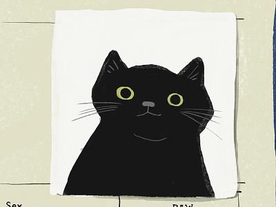 Elly Cat digital pet animal illustration cat