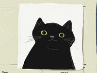 Elly Cat