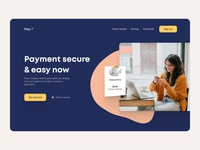 Landing Page For Payments