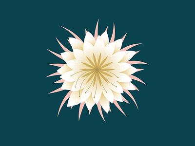 Night Bloomer art album artwork record design album design flower floral vector illustration design