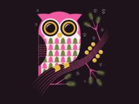 Christmas Owl / WIP