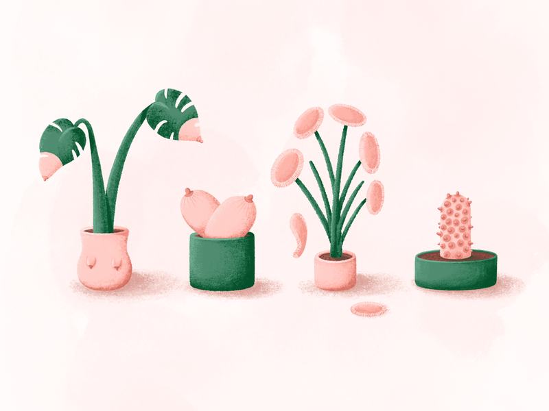 Boob plants