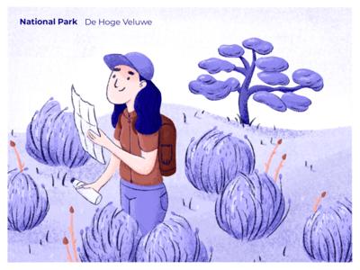 National Park: De Hoge Veluwe