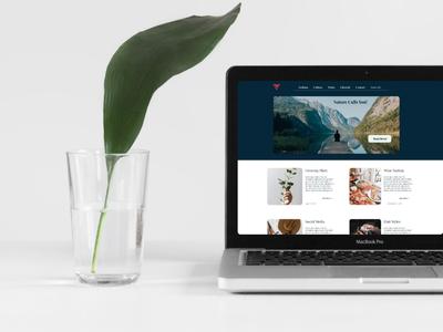 V Blog Design