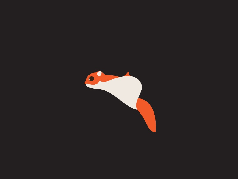 Flying Squirrel  logo design concept mailing mail delivery squirrel flying