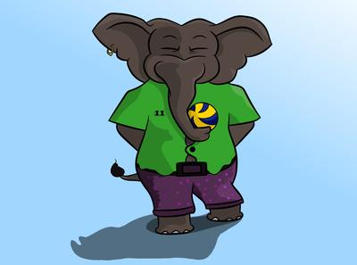 Elephant wide