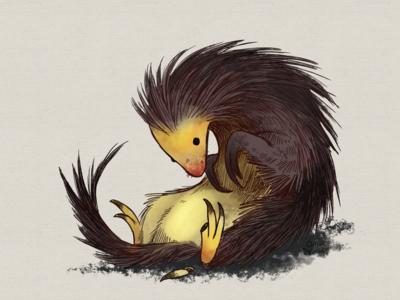 Porcupine/Pangolin