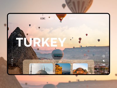 Turkey website design webdesign web design ux design website uxui uiuxdesign uiux design web ux ui