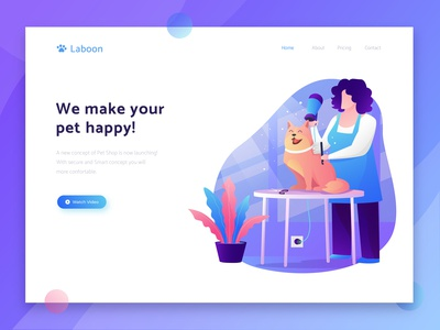 Landing Page Illustration Exploration for Pet Service Website