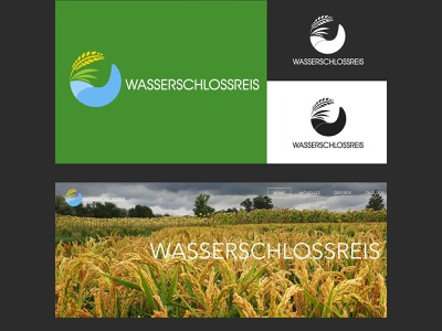 WASSERSCHLOSSREIS LOGO CONCEPT photoshop illustrator illustration simple design simple logo flat logobrand logo branding design graphic logo branding design