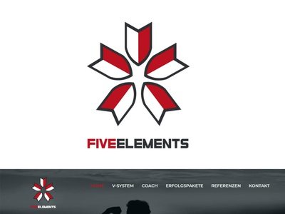 FIVE ELEMENTS LOGO CONCEPT logodesigner logodesign icon logo branding design graphic design
