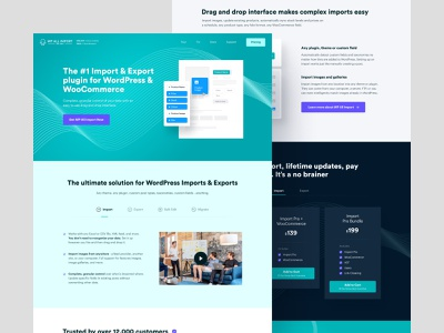 WP All Import - Home pricing page inner pages docs data product design branding colors pastel teal pricing ux visual identity wordpress plugin plugin import wordpress home web design web website