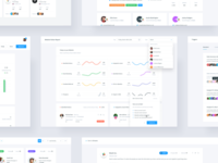Dashboard - Report, Profile, Companies